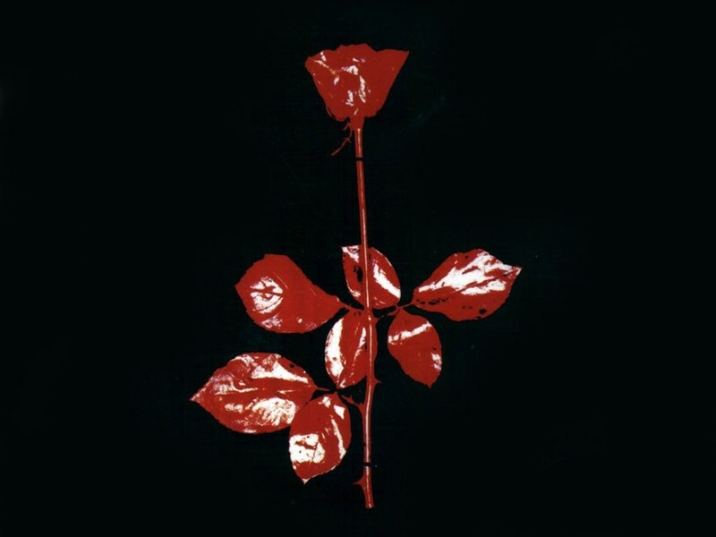 depeche mode rose
